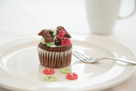 cupcakes-with-style-41gl_ck